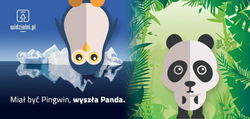 Miał być Pingwin, wyszła Panda