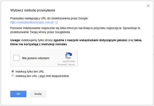 Przesyłanie adresów w Google Search Console