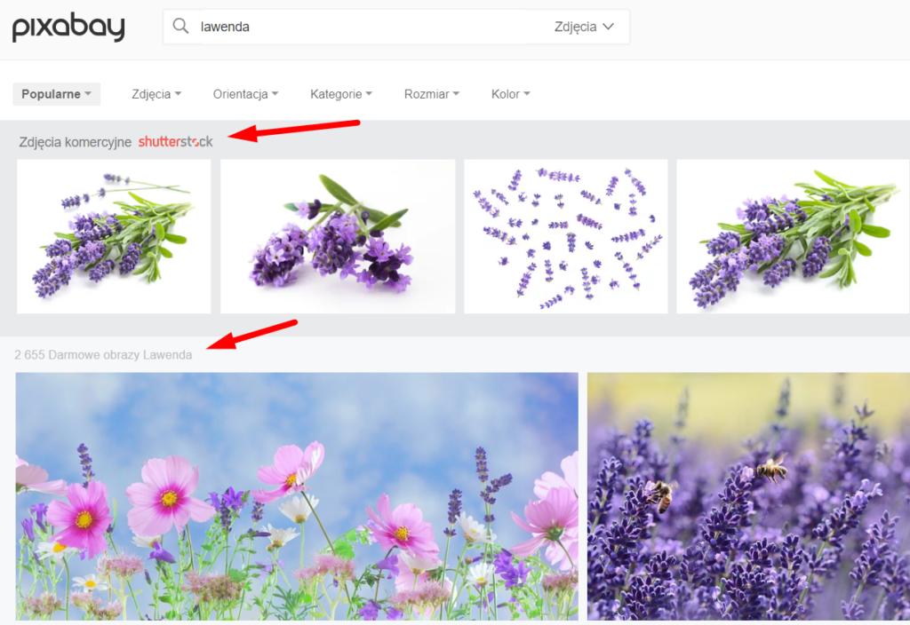 Wyniki wyszukiwania Pixabay