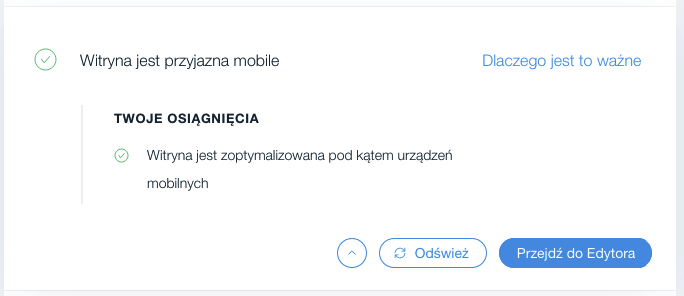 Wix SEO Wiz – weryfikacja wersji mobilnej
