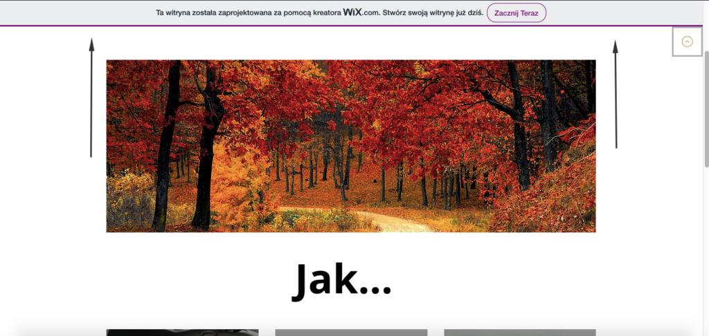 Przykład reklamy WIX w wersji bezpłatnej