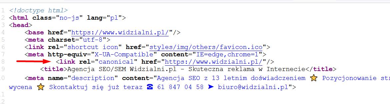Adres kanonicznyw kodzie strony