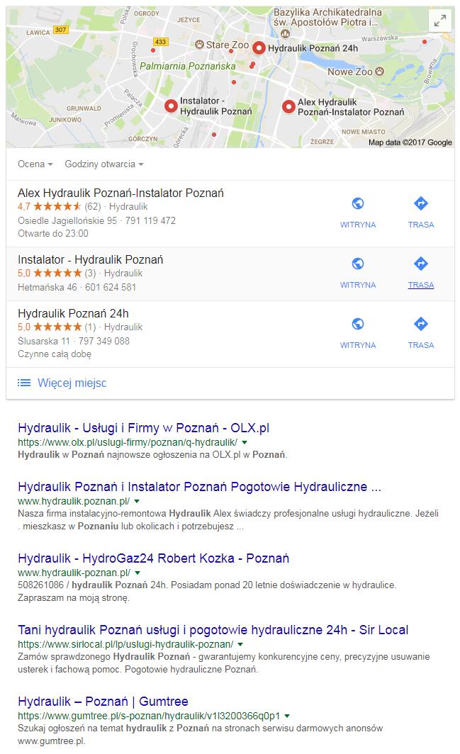 Wyniki wyszukiwania dla zapytania lokalnego hydraulik Poznań